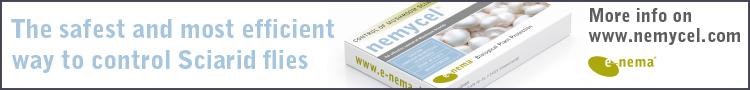 Логотип-e-nema