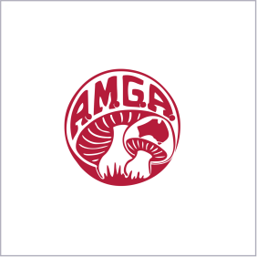 AMGA final