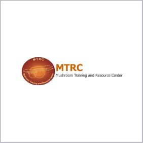MTRC final