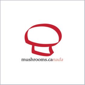 蘑菇加拿大决赛