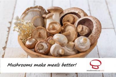 버섯은 당신에게 좋습니다!