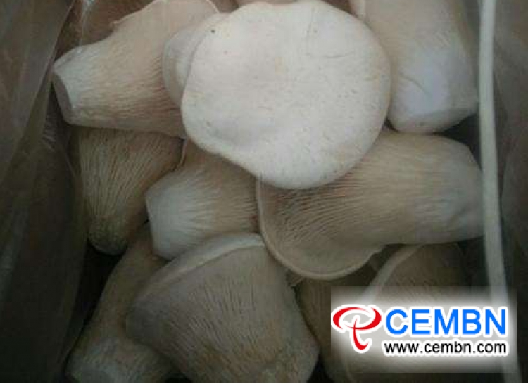 Anhui Zhougudui Market: Analysis of Mushroom Price