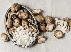 6 Verrassende Mushroom-gezondheidsvoordelen voor uw huid, hersenen en botten