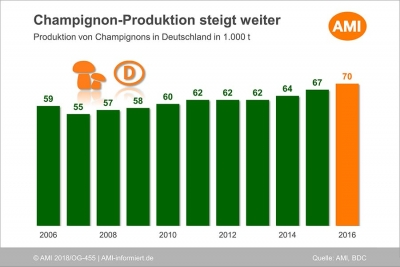 Augmentation de la production de champignons allemands
