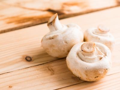 Chinova Bioworks: réduire le gaspillage alimentaire grâce à l'extrait de champignon écologique