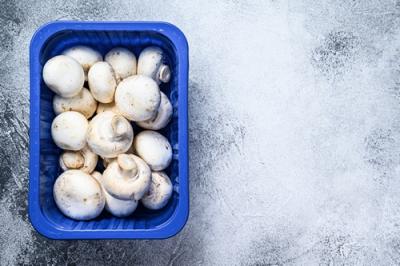 Sortie des plateaux de champignons bleus