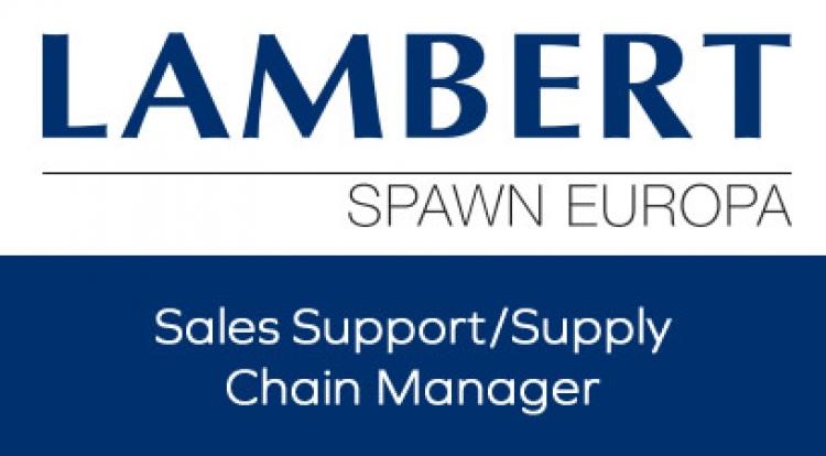 Vertriebsunterstützung / Supply Chain Manager M / F.