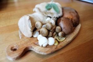 Ten uparty 32-latek jest największym eksporterem egzotycznych grzybów w Europie