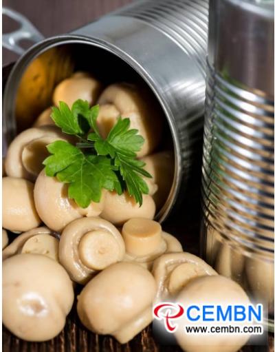 中国2018罐头蘑菇产业市场发展规模