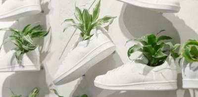 Adidas lance des chaussures à base de plantes en cuir de champignon