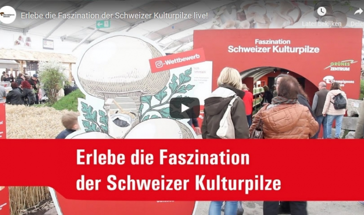 Der Schweizer Kulturpilz