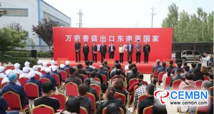 Tiantianxiang Food Co., LTD: Shiitake mantar kutuları Malezya pazarına girdi