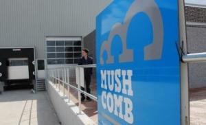 Mush Comb 25 yaşında!