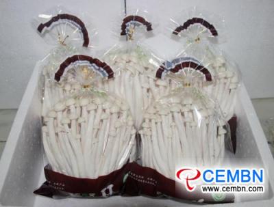 Rynek Shanxi Hexi: analiza ceny grzybów