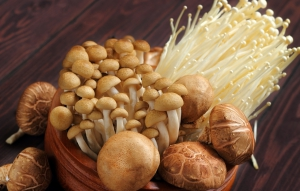 National Mushroom month