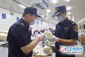重庆:新鲜的金针菇首次出口到泰国