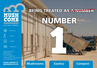 MUSH COMB & # 039؛ S NEW BRAND NEW IDENTITY