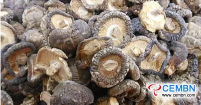 生产情况& 中国香菇的销售市场与出口贸易