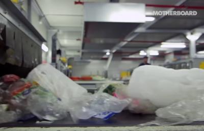 الفطريات: بلاستيك المستقبل