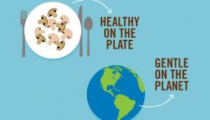 Historia zrównoważonego rozwoju grzybów