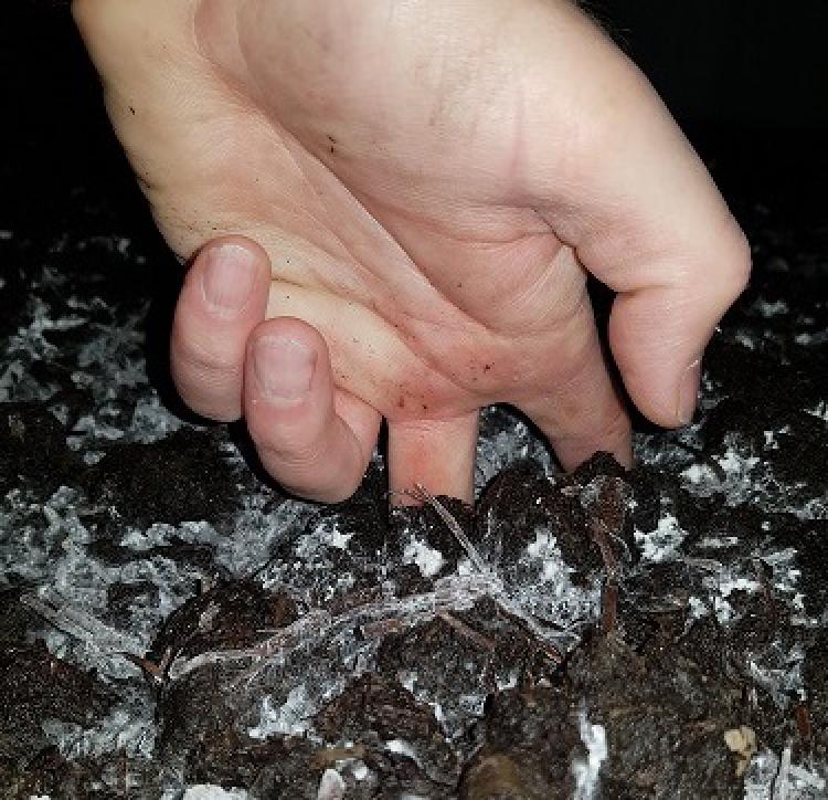 Gehäuse Boden