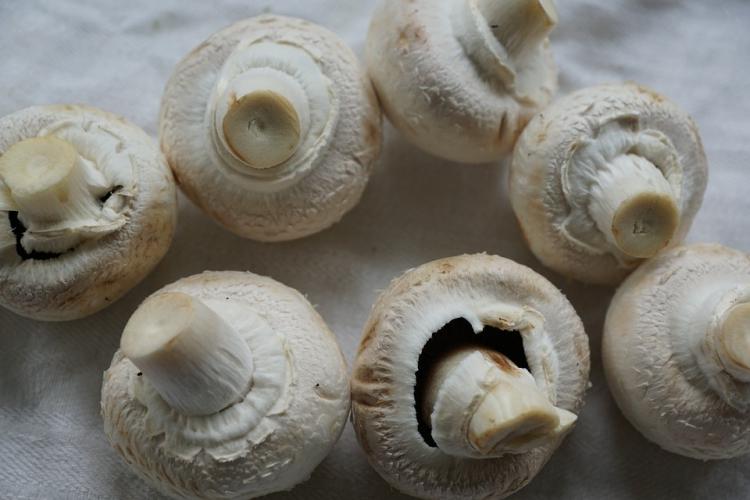 Champignons zitten vol met antioxidanten die mogelijk veroudering tegengaan