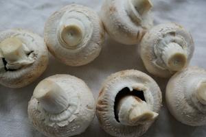 I funghi sono ricchi di antiossidanti che possono avere un potenziale anti-invecchiamento